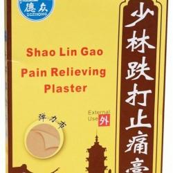 少林趺打止痛膏 Shao Lin Gao Pain Relieving Plaster