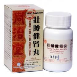 壯腰健腎丸 ( I ) Zhuang Yao Jian Shen Wan